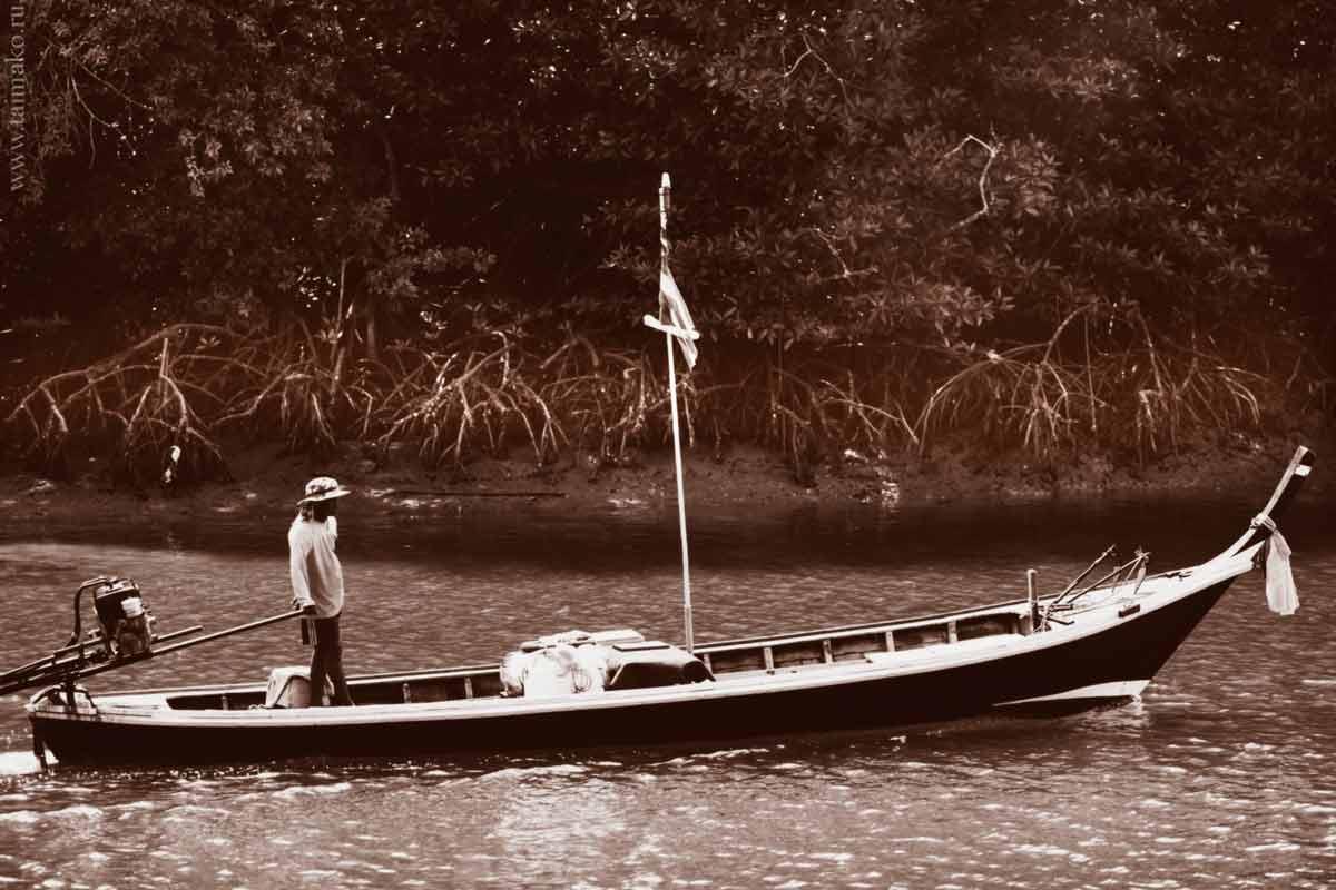 mangrove-panwa-3