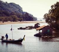 mangrove-panwa-2