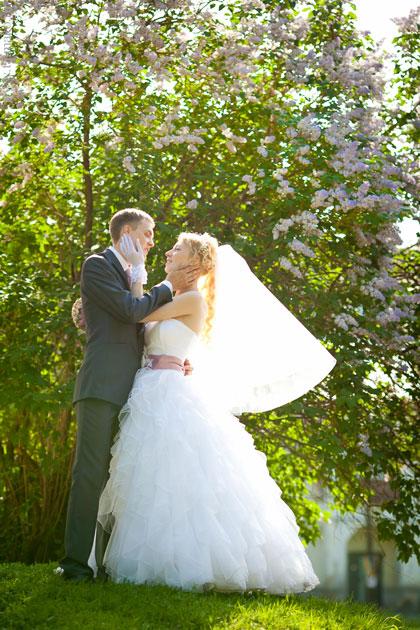 Свадьба в сирени