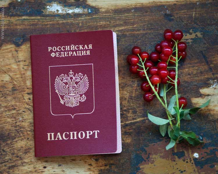 Получить паспорт госуслуги
