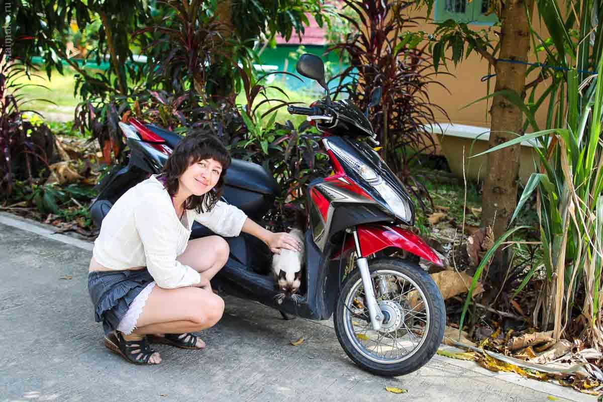 Animals-Phuket-2