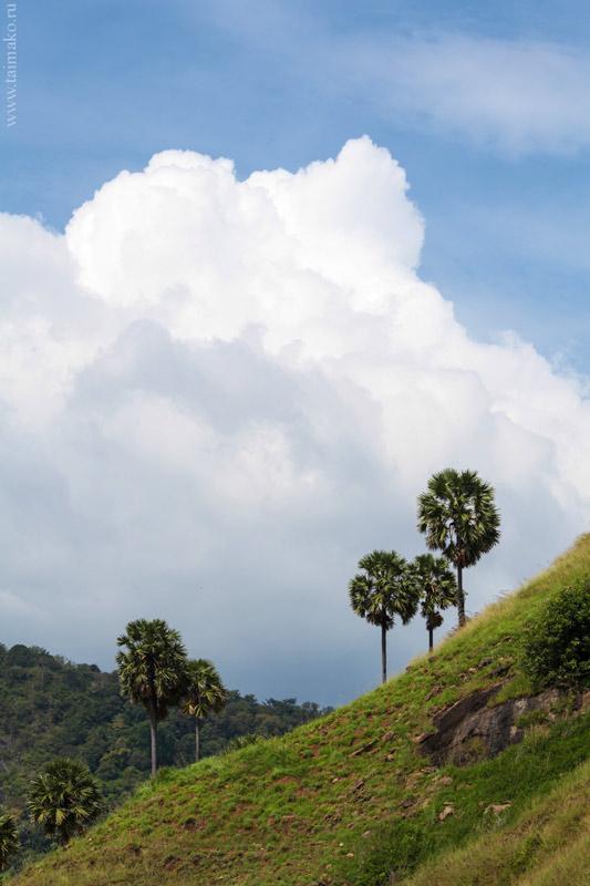 Phuket-travel-12