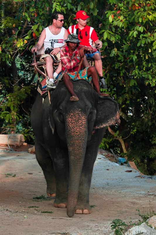 Big-Buddha-Phuket-2