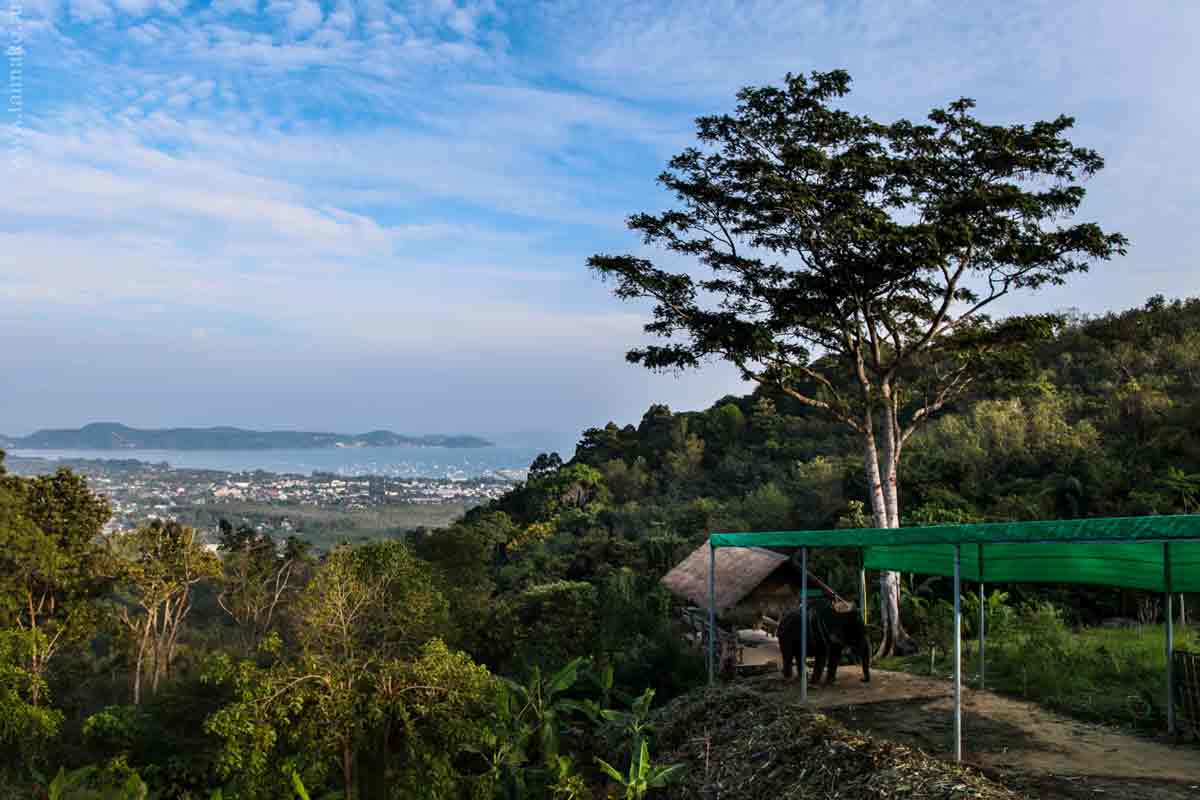 Big-Buddha-Phuket-4