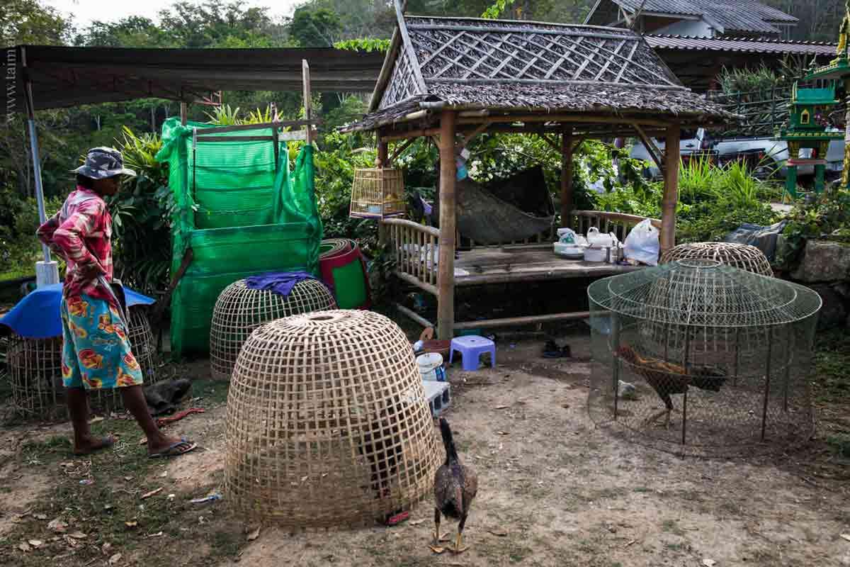 Big-Buddha-Phuket-5