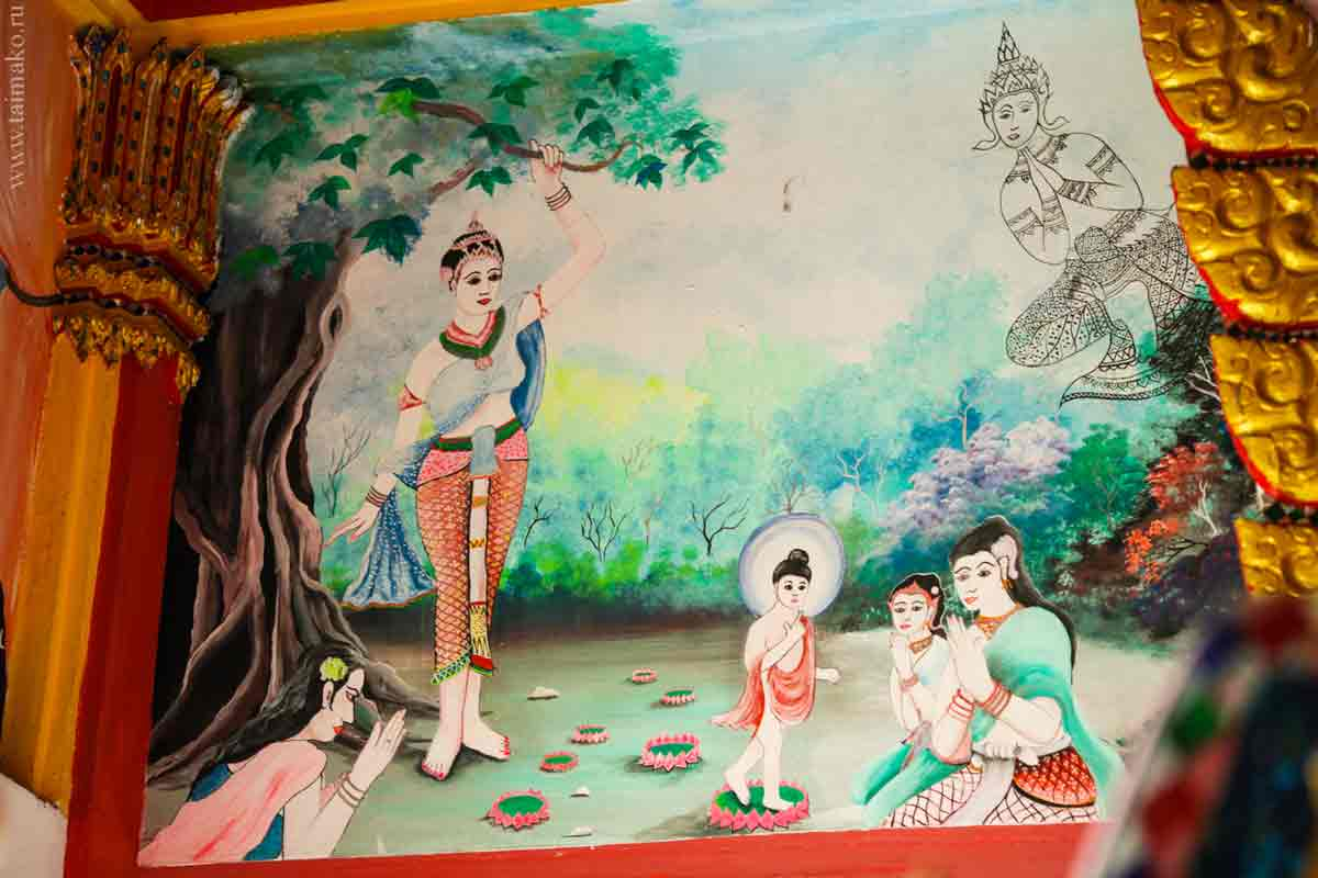 Wat-Ko-Sirey-23