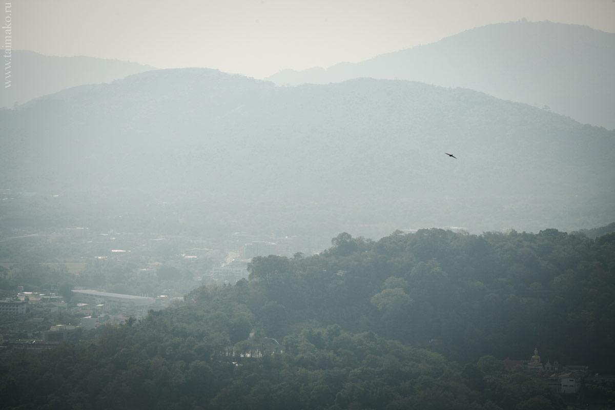 Monkey-Hill-12