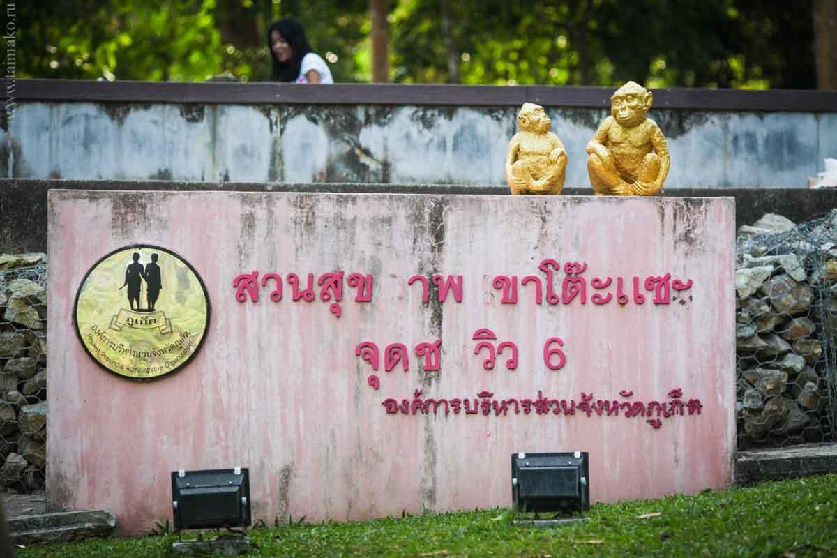 Monkey-Hill-2